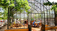 Greenhouse Restaurant at Babylonstoren